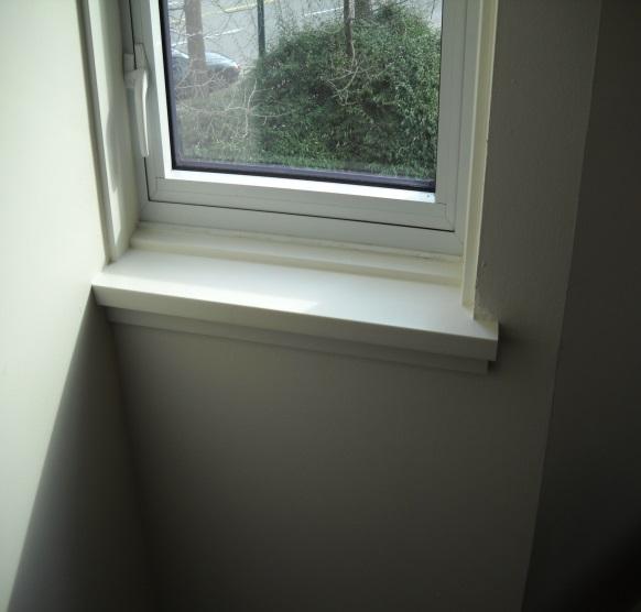 Mold Free Window